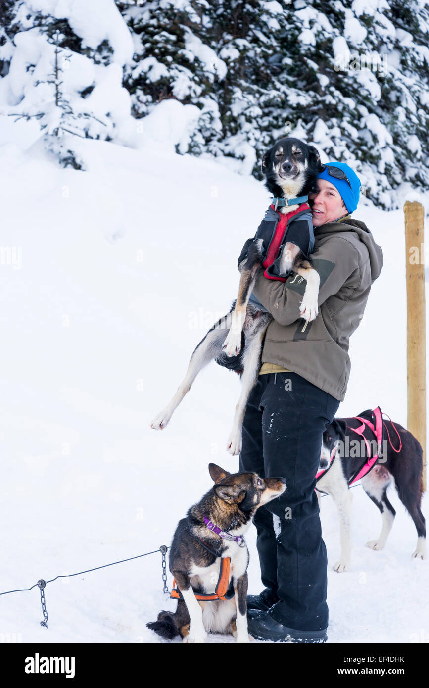 Dog sled handler enjoys a moment with one of her dogs, Lake Louise, Banff National Park, Alberta, Canada - Stock Image