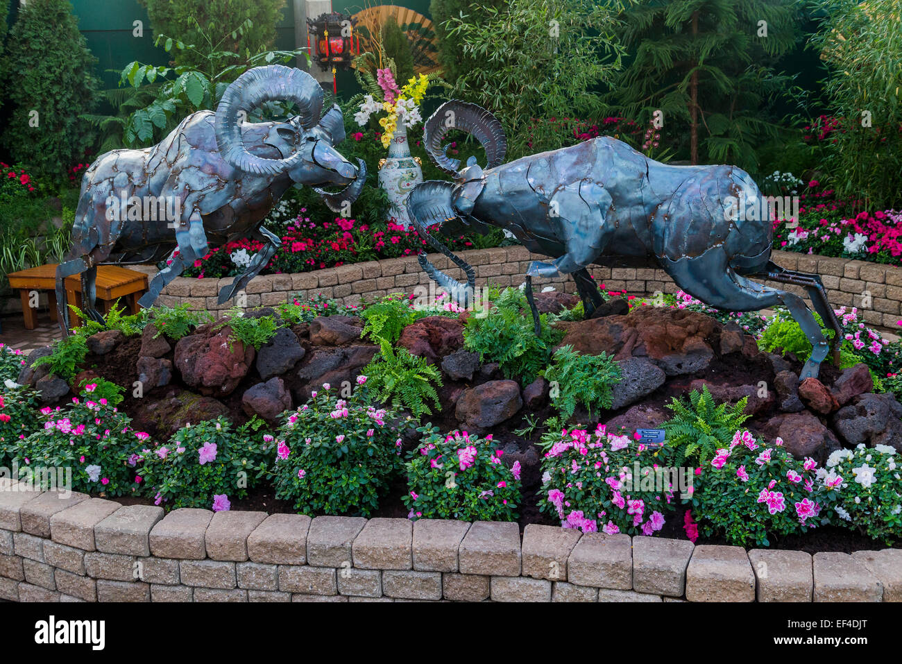 Display in the feature pavilion celebrates the Chinese New Year of the Ram, the Muttart Conservatory  Edmonton, - Stock Image