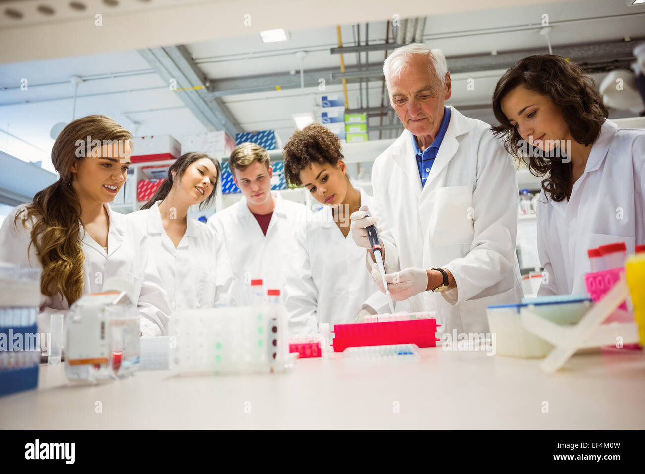 Students watching lecturer in the lab - Stock Image