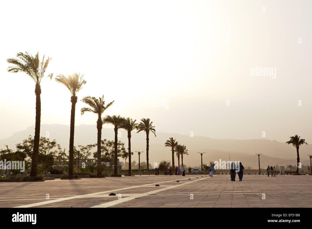 Avenue in Egypt - Stock Image