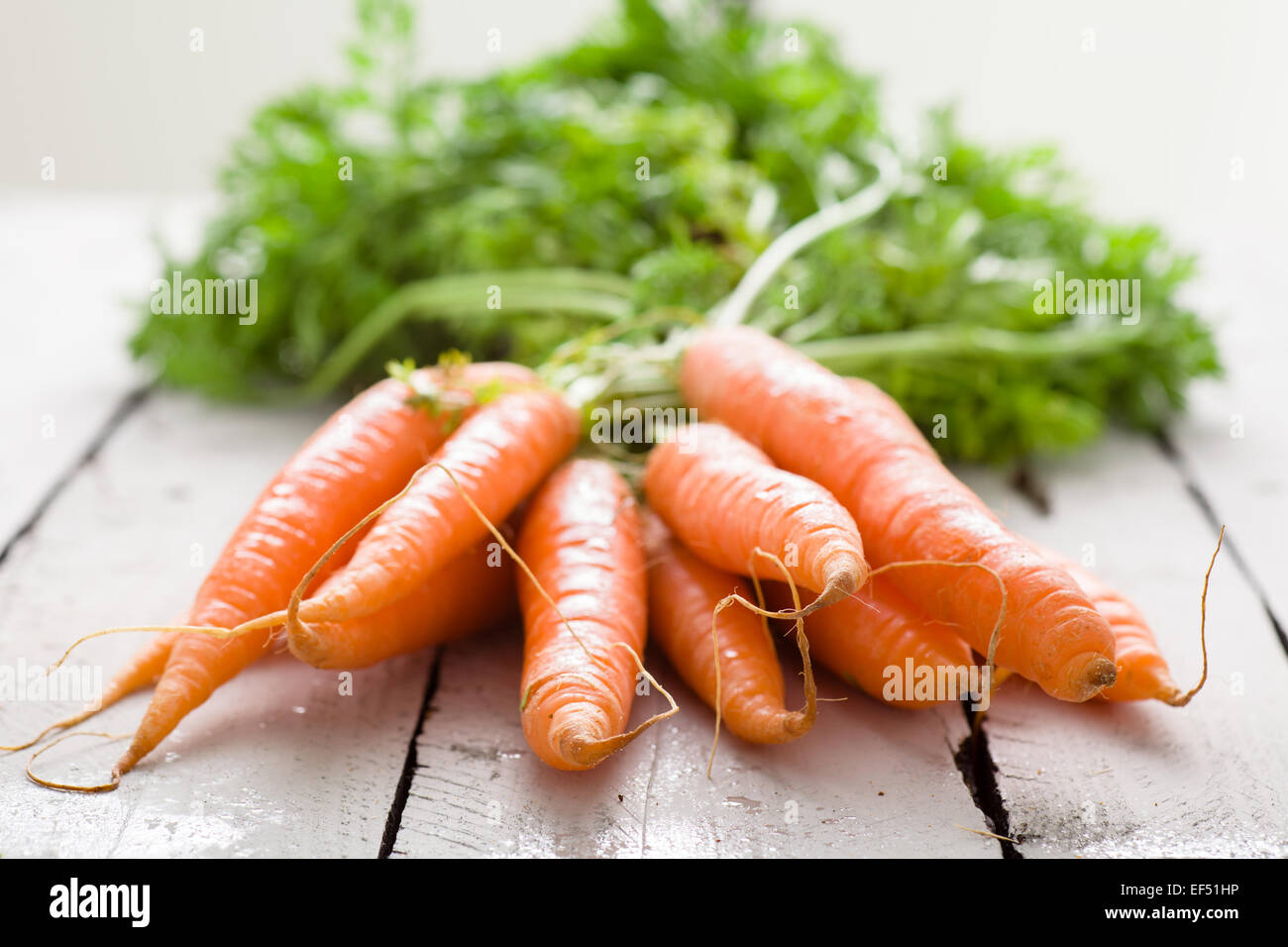 Bunch of Tied Carrots on White Wood - Stock Image