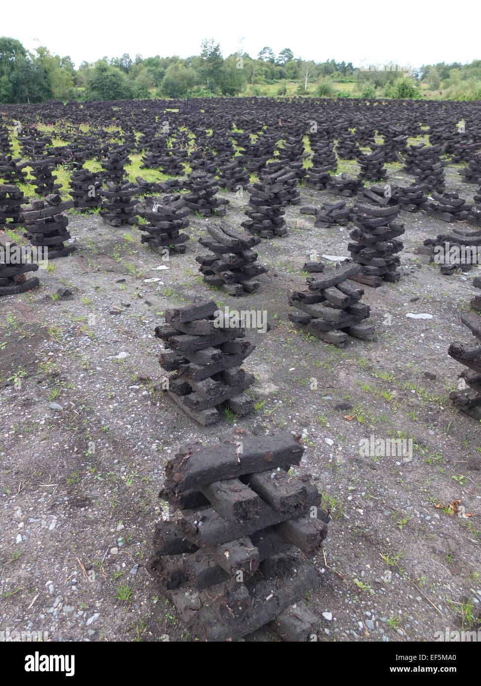 Peat stacks in Ireland - Stock Image