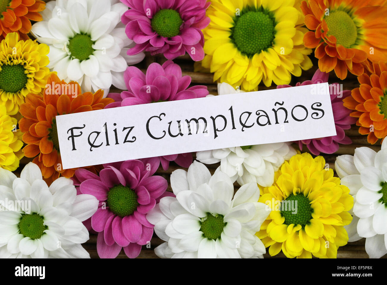 Feliz Cumpleanos Which Means Happy Birthday In Spanish Card With