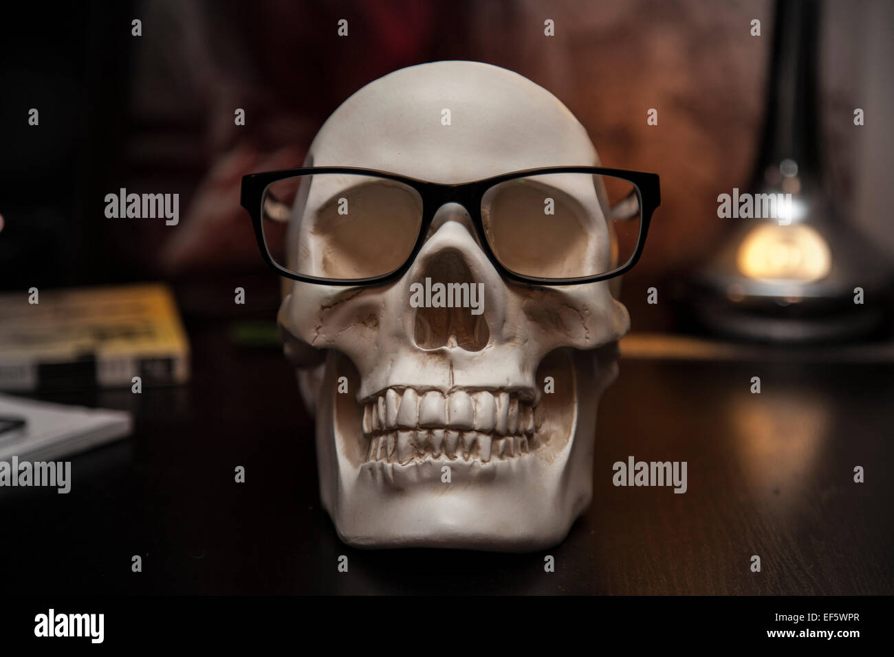 A geeky Skull Wearing Glasses - Stock Image