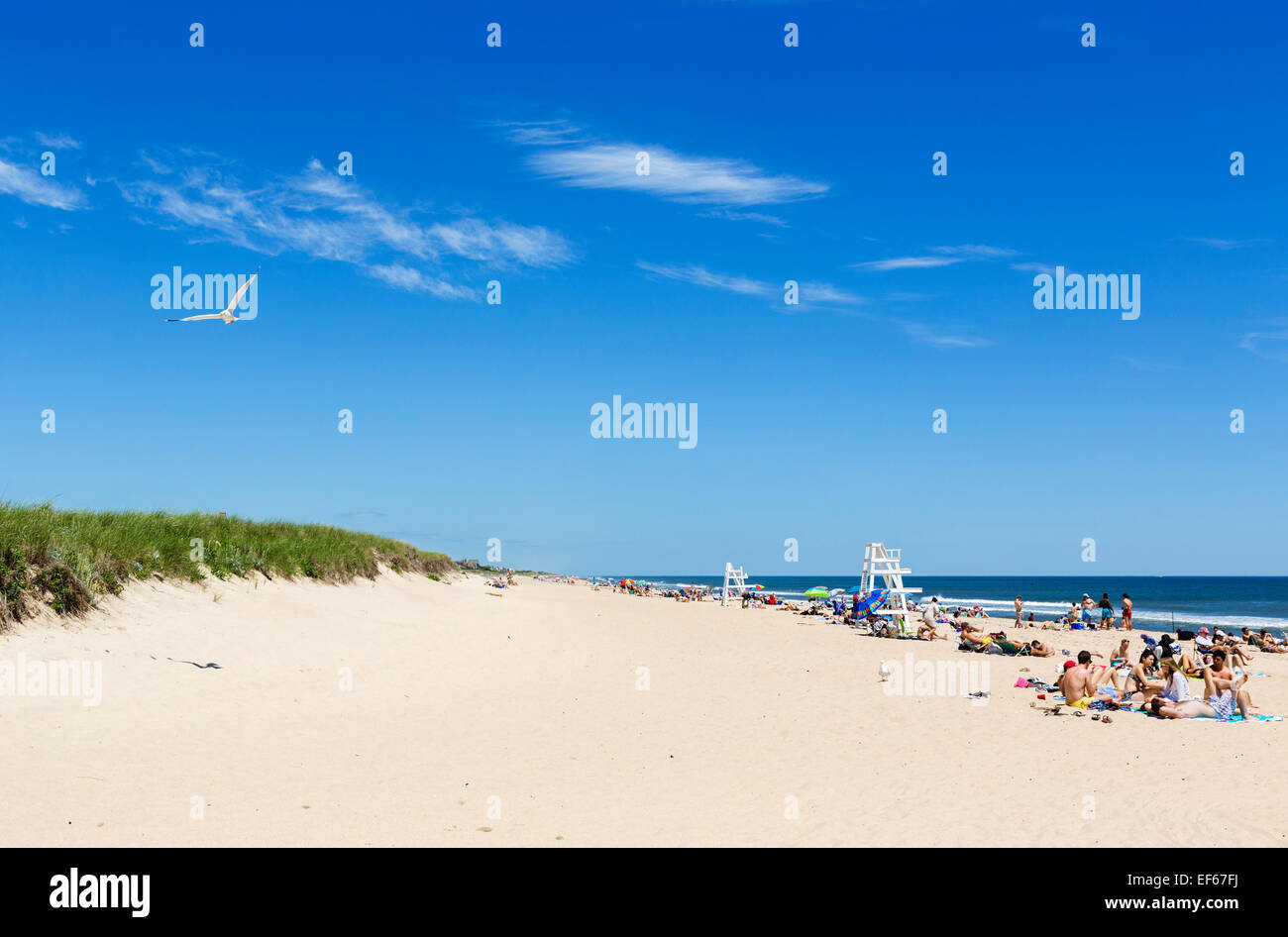 Suffolk County Long Island Property Search