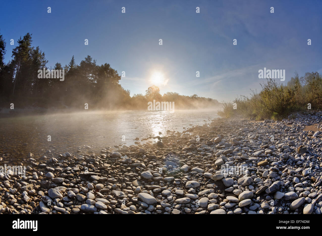 Isar river with morning fog, Pupplinger Au, Wolfratshausen, Upper Bavaria, Bavaria, Germany Stock Photo