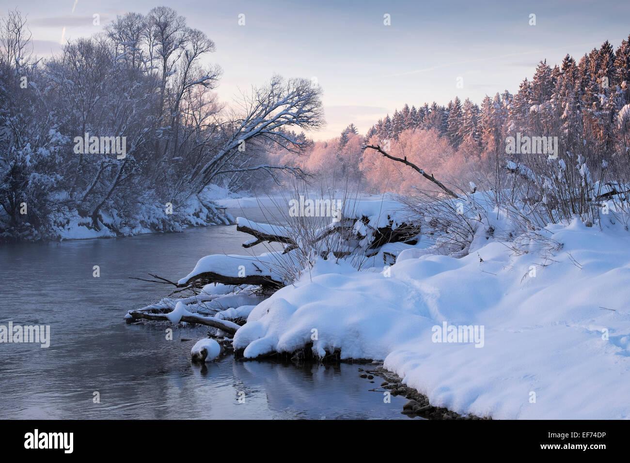 Winter morning, Isar river, Pupplinger Au, Geretsried, Upper Bavaria, Bavaria, Germany - Stock Image