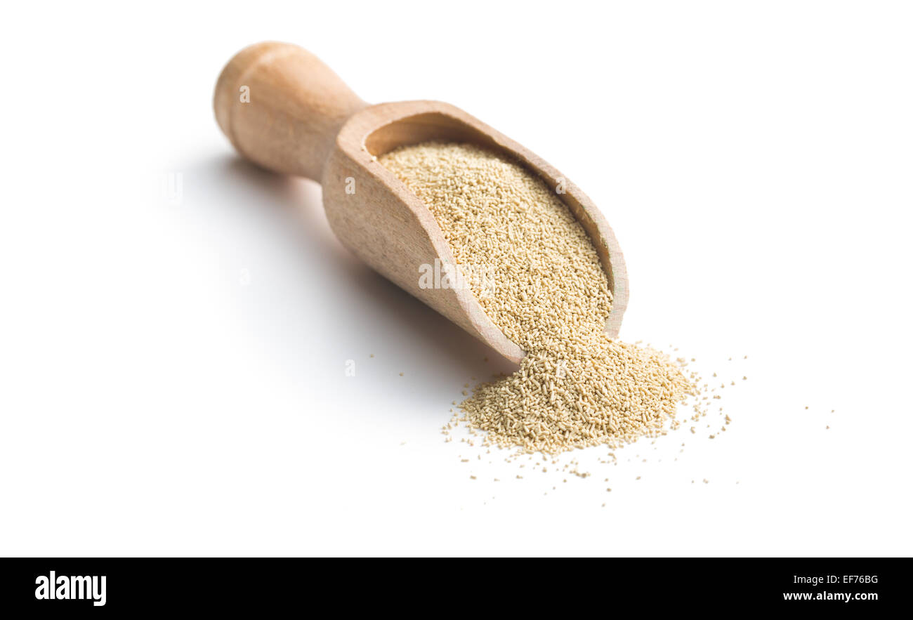 dry yeast in scoop on white background - Stock Image