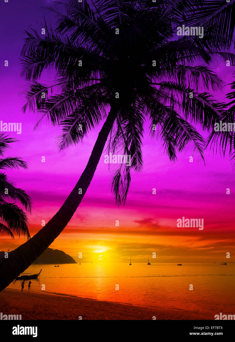 Palm tree silhouette on tropical beach at sunset. - Stock Image