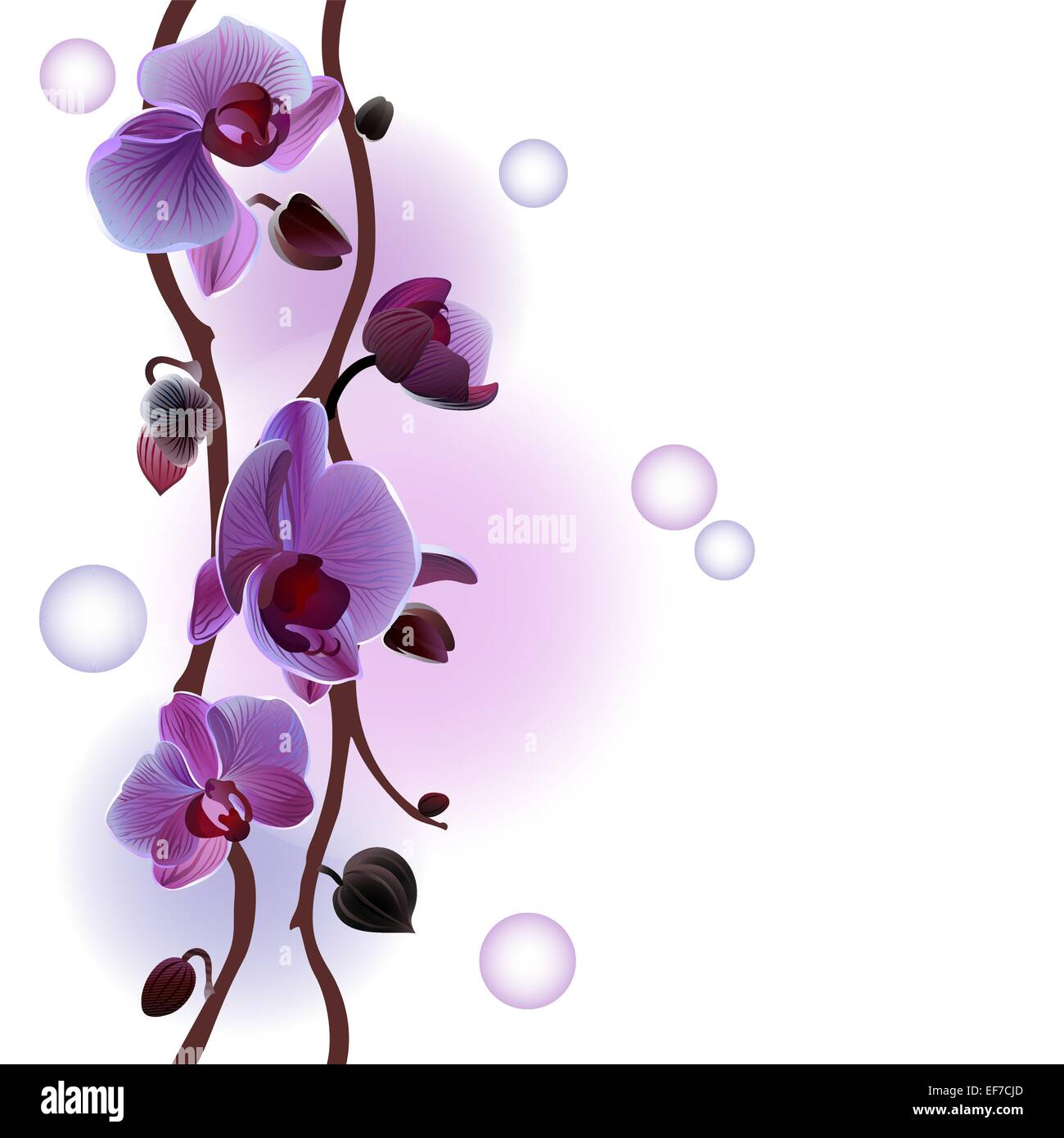 Vector seamless background with gentle orchids branches - Stock Vector