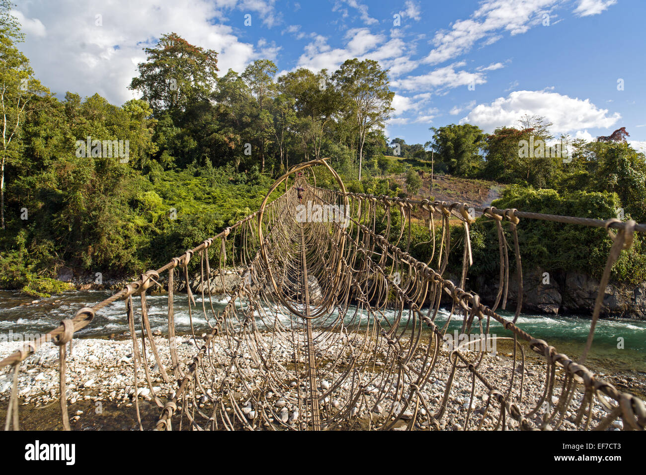 1000ft (300m) long suspension bridge over the siang rive - Stock Image