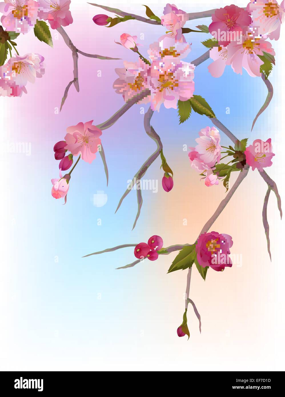 Vector background with gentle sakura branches of flowers - Stock Vector
