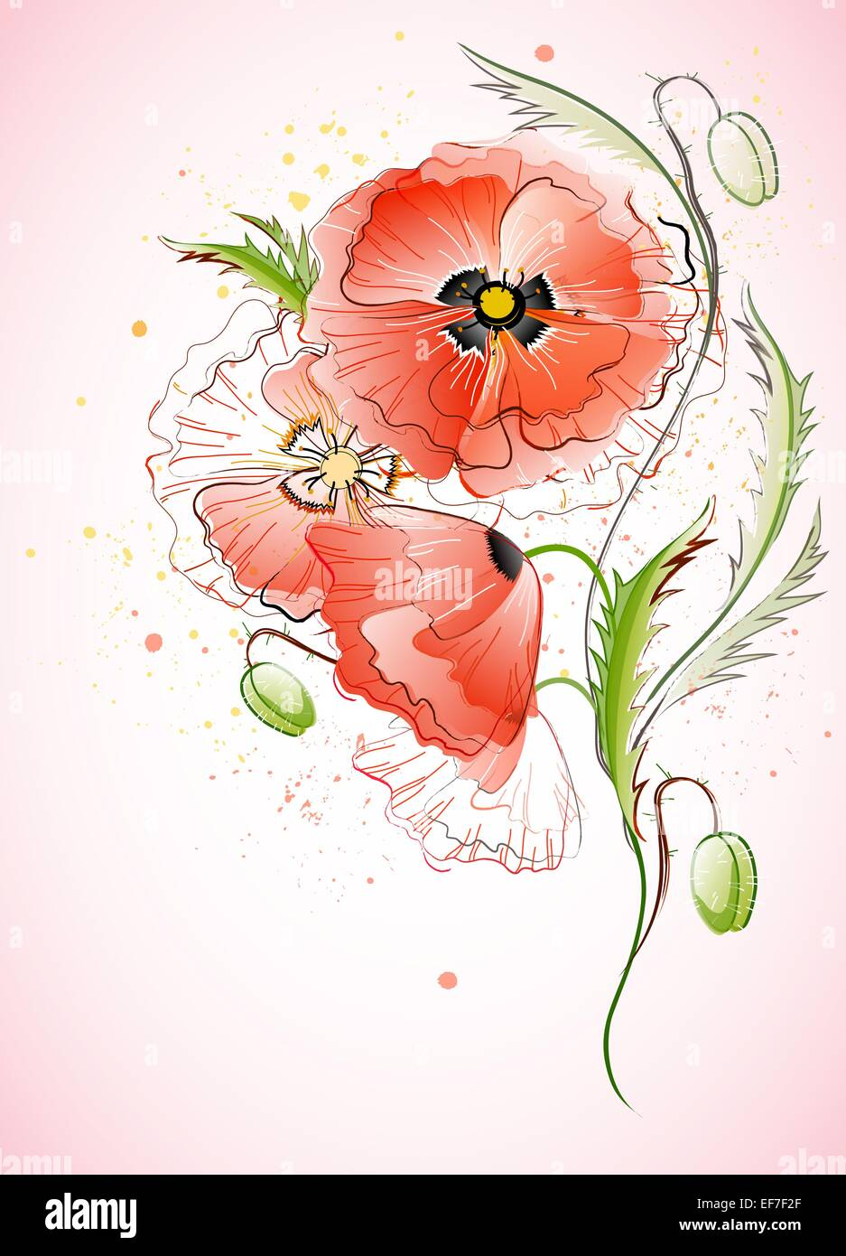 Vector vertical greeting card with red gentle poppy flowers - Stock Vector