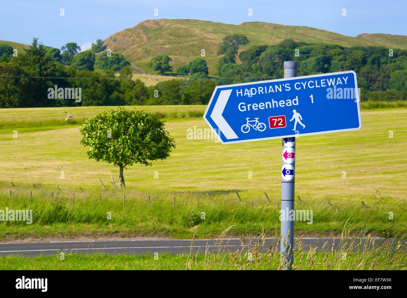 Sign post to Haltwhistle  looking across the B6318 Hadrian's Wall Cycleway sign near Greenhead Cumbria England - Stock Image