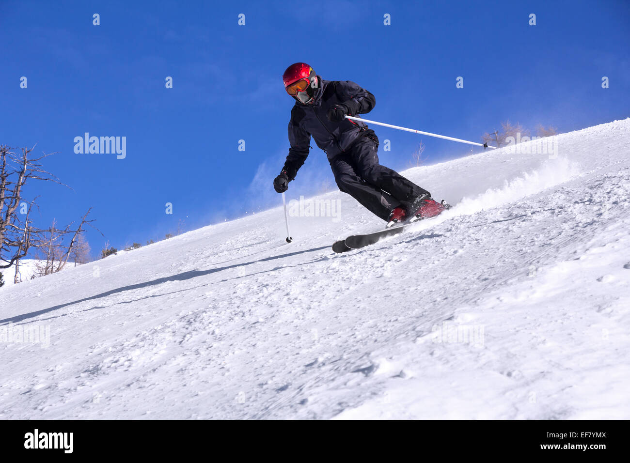Skier with a mask on face skiing downhill in high mountains and sunny day - Stock Image