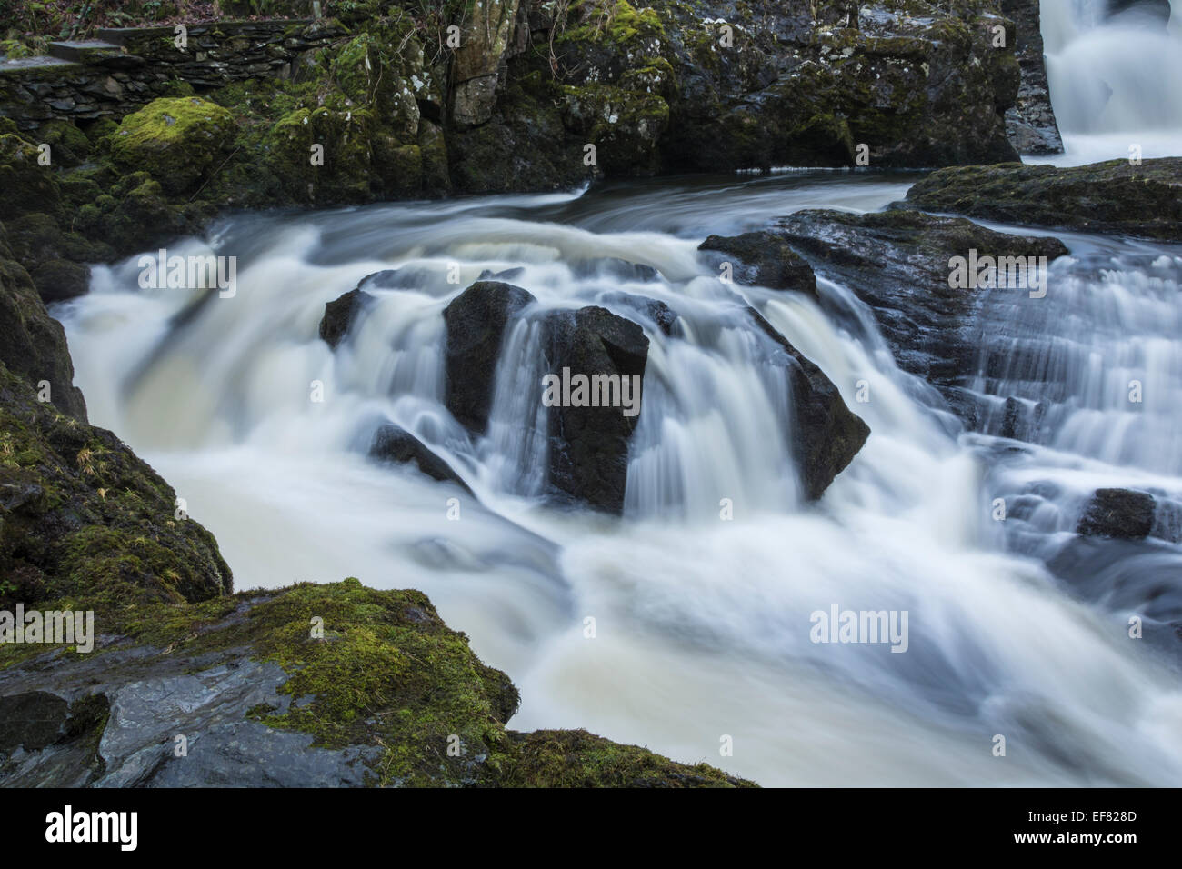 Rival Falls on the famous Ingleton Waterfalls walk in the Yorkshire Dales. - Stock Image