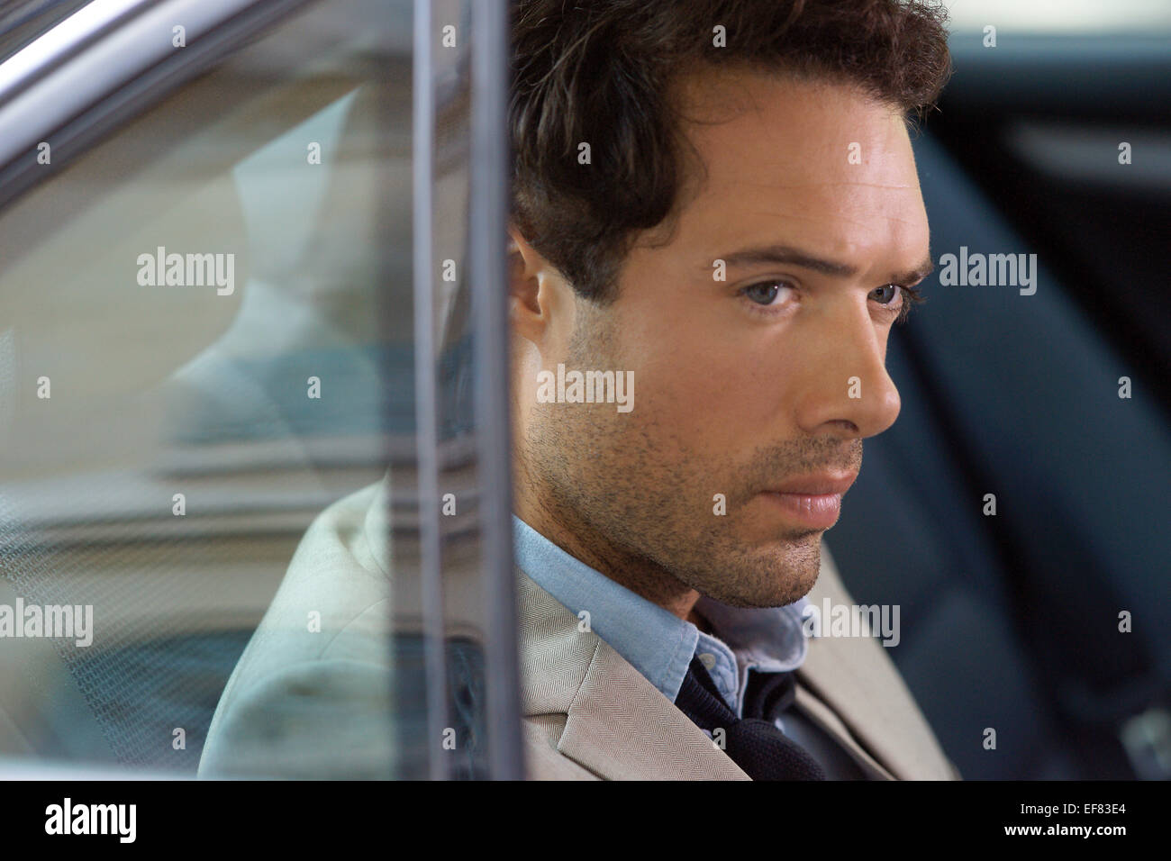 NICOLAS BEDOS LOVE IS IN THE AIR; AMOUR & TURBULENCES (2013) - Stock Image