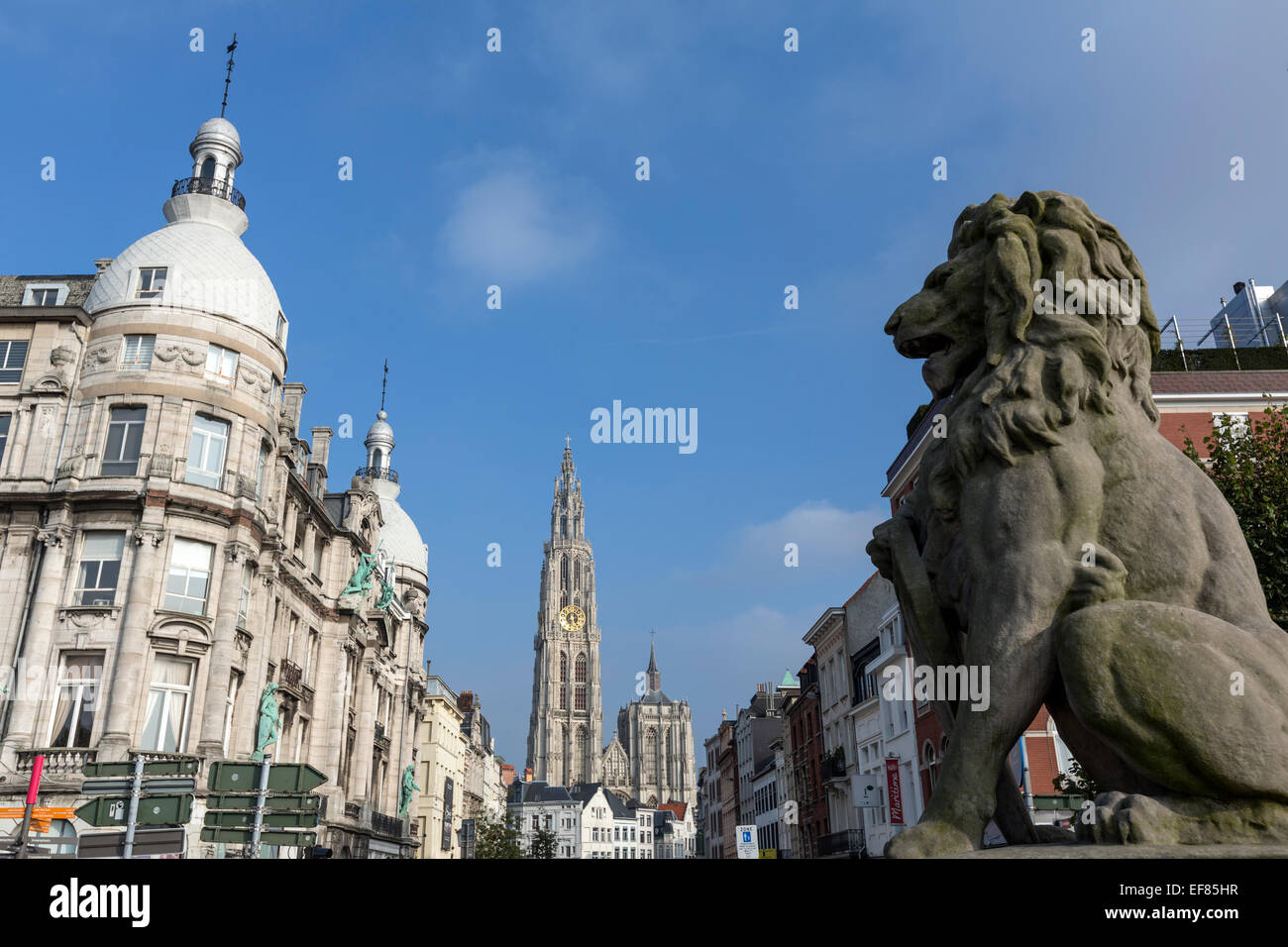 Stone lion sculpture in Ernest van Dijckkaai street and the Cathedral of Our Lady Antwerp, - Stock Image