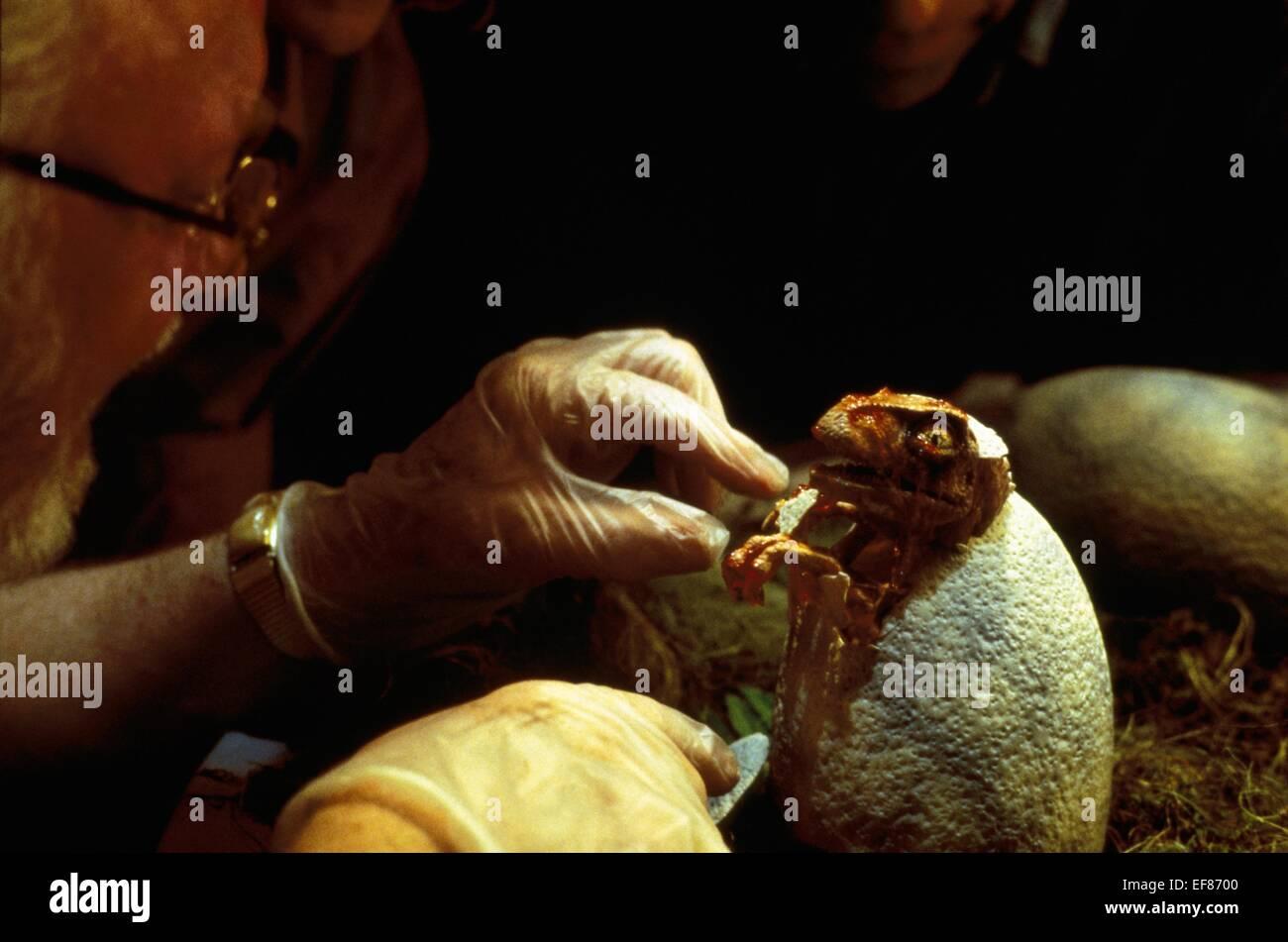 HATCHING DINOSAUR JURASSIC PARK (1993) - Stock Image