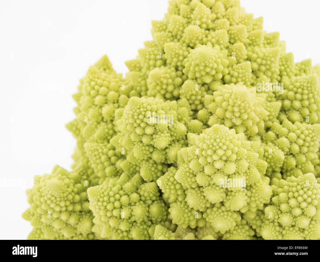 Broccoli Flower Stock Photos Broccoli Flower Stock Images Alamy