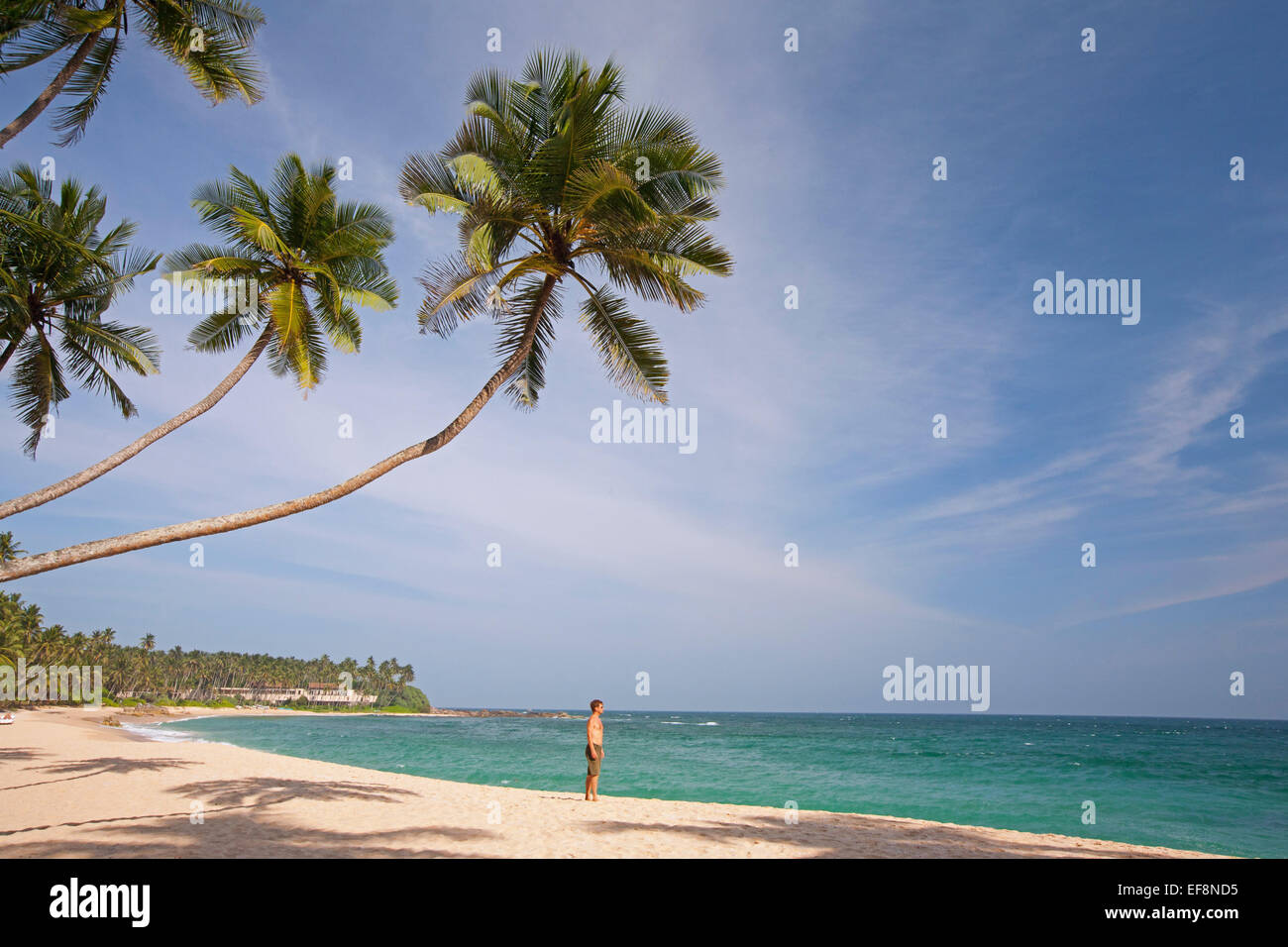 MAN ON DESERTED BEACH IN TANGALLA - Stock Image