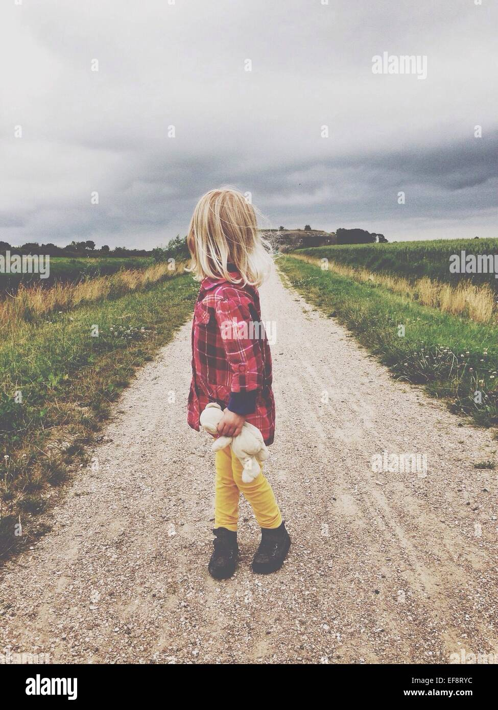 Blonde girl (2-3) standing on dirt road, holding teddy bear, looking over shoulder - Stock Image