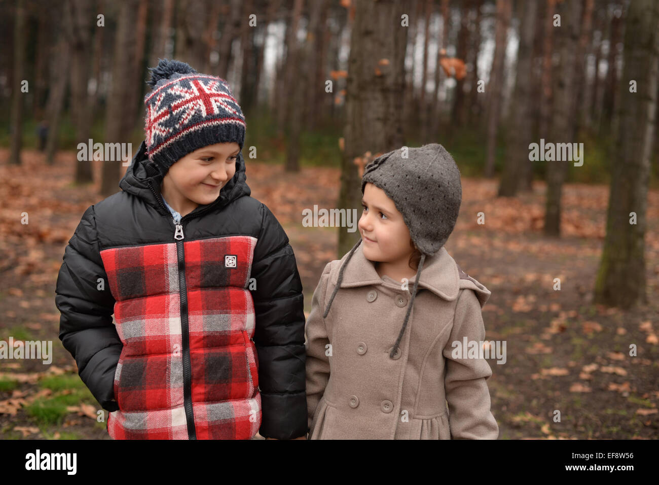 Brother (6-7) and sister (4-5) walking in forest - Stock Image