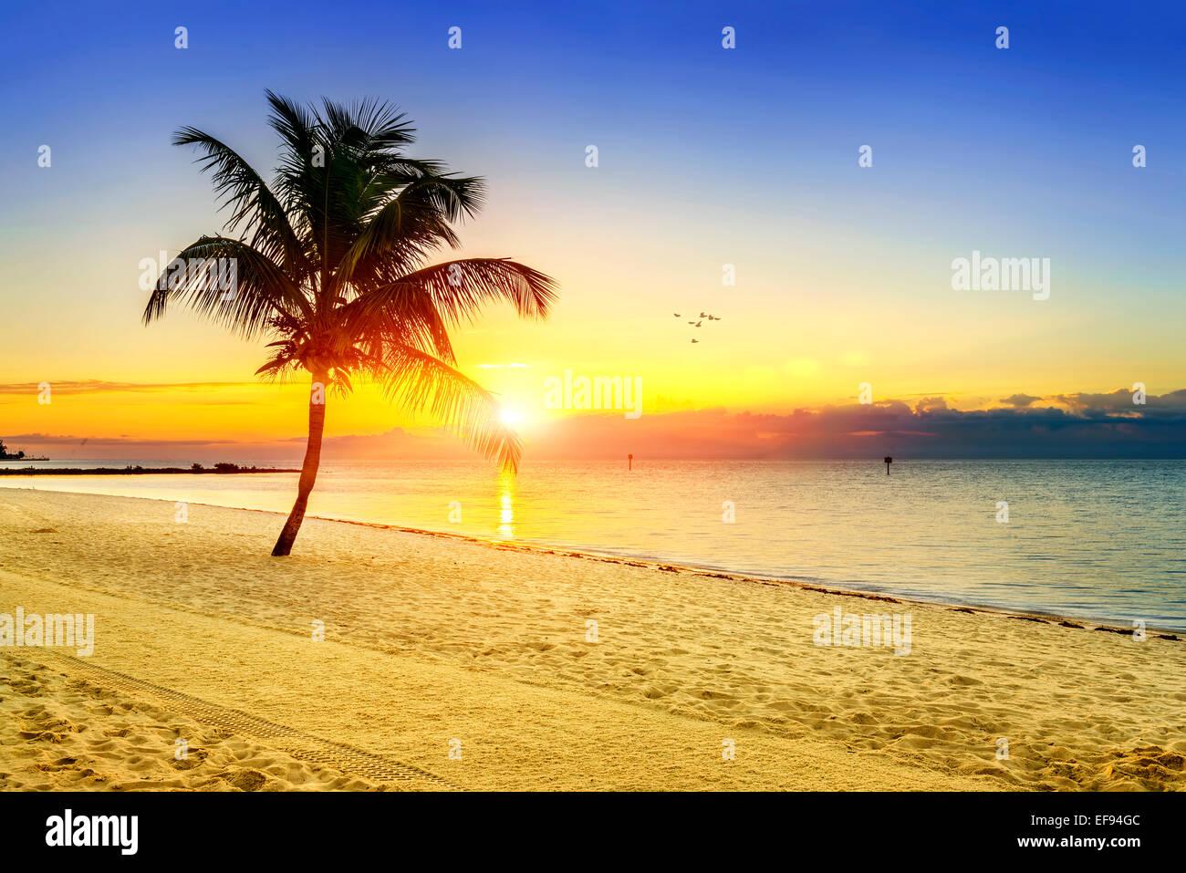 Beautiful sunrise at Key West, Florida, USA - Stock Image