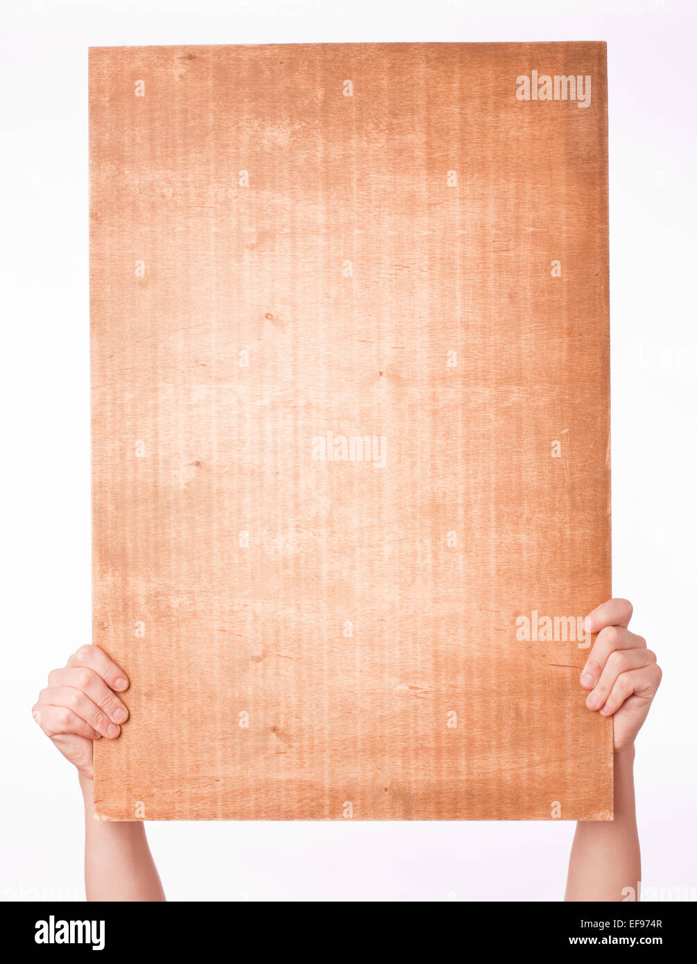 hands holding veneer sheet over white background - Stock Image