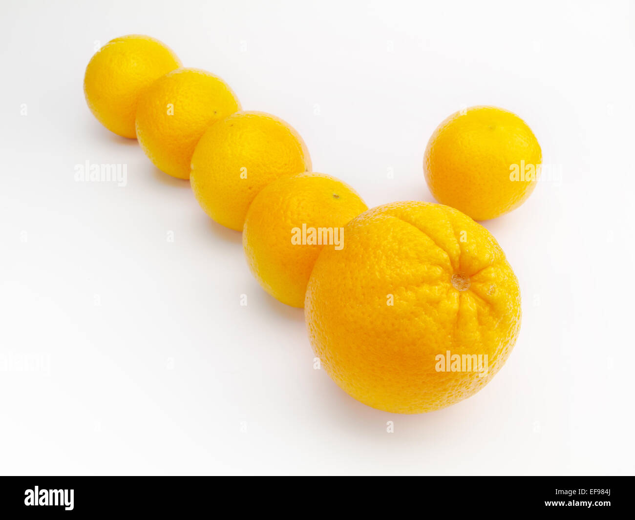 oranges isolated on a white background - Stock Image