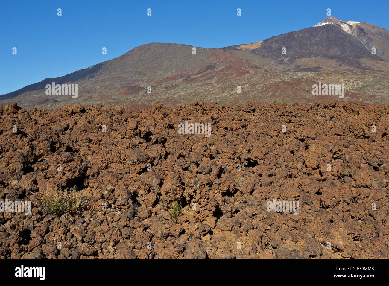 Lava field, Teide and Pico Viejo, Las Cañadas del Teide, Teide National Park, Stock Photo