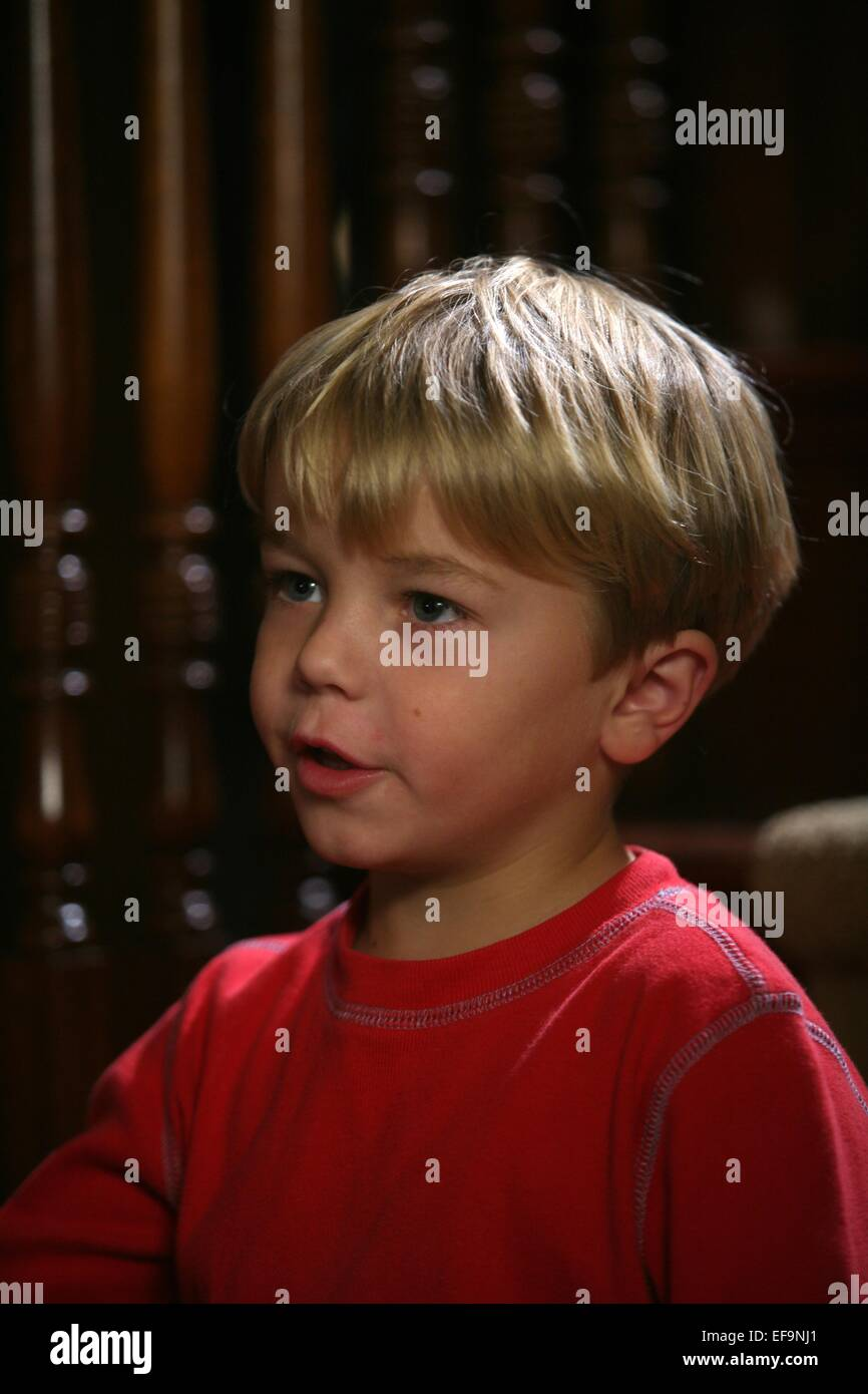 A Dennis The Menace Christmas.Maxwell Perry Cotton A Dennis The Menace Christmas 2007