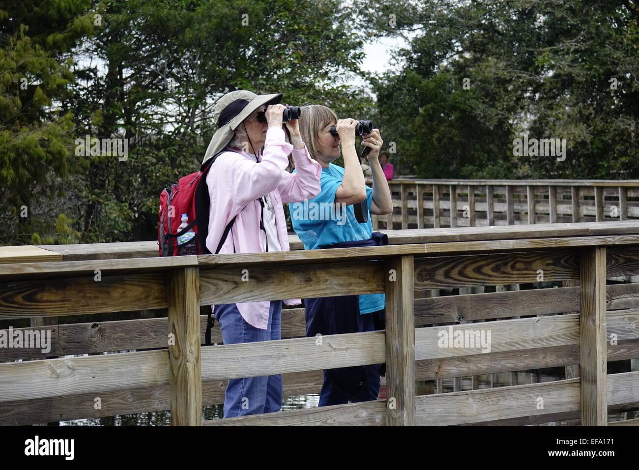 Birdwatchers at Wakodahatchee Wetlands, Delray Beach, Palm Beach County, Florida - Stock Image