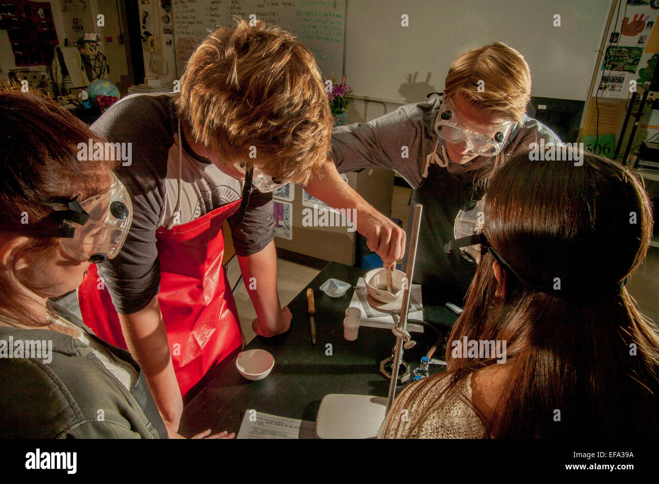 High school chemistry students in San Clemente, CA, dip a copper penny in a sodium hydroxide (NaOH) over a Bunsen - Stock Image