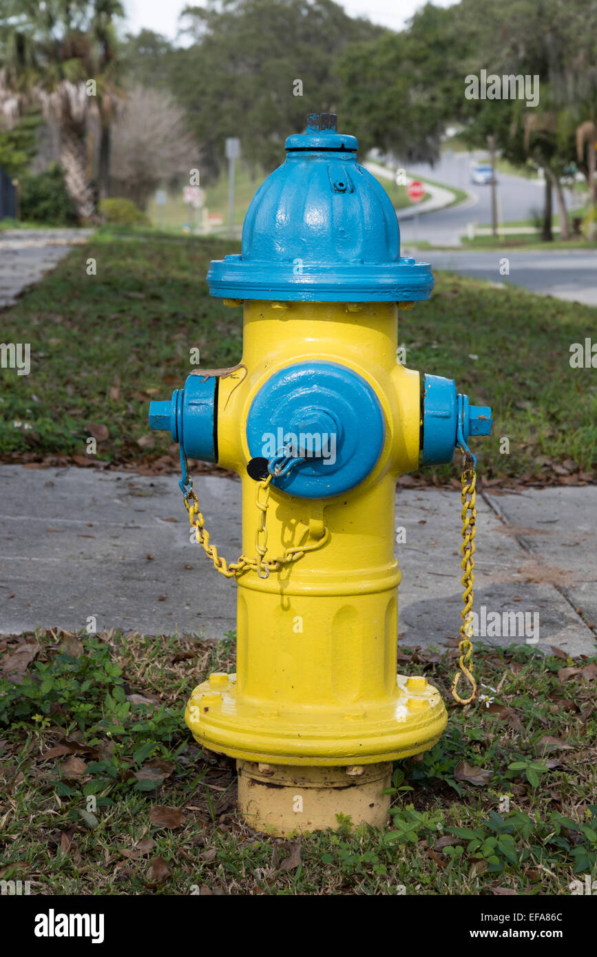Fire hydrant, Clermont, Lake County, Florida - Stock Image
