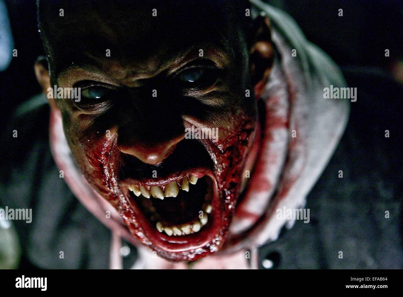 ZOMBIE THE HORDE (2009) - Stock Image