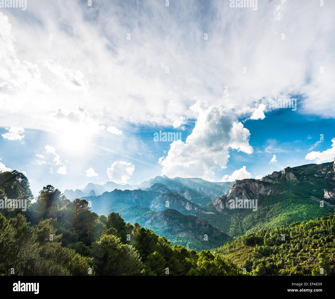 Rocky landscape with pines and cloudy sky, Bavella, Bavella Massif, Corsica, France - Stock Image
