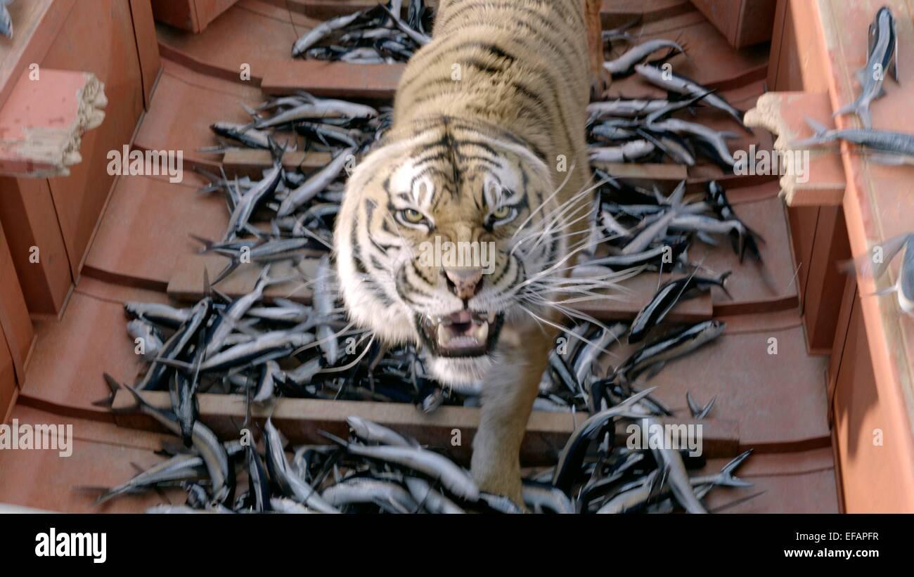 Tiger Fish Life Of Pi 2012 Stock Photo Alamy