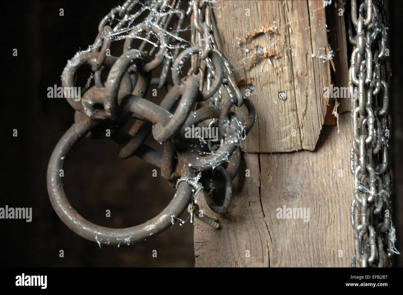 CHAINS TIMBER FALLS (2007) - Stock Image