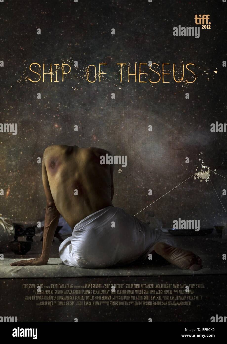 MOVIE POSTER SHIP OF THESEUS (2012)