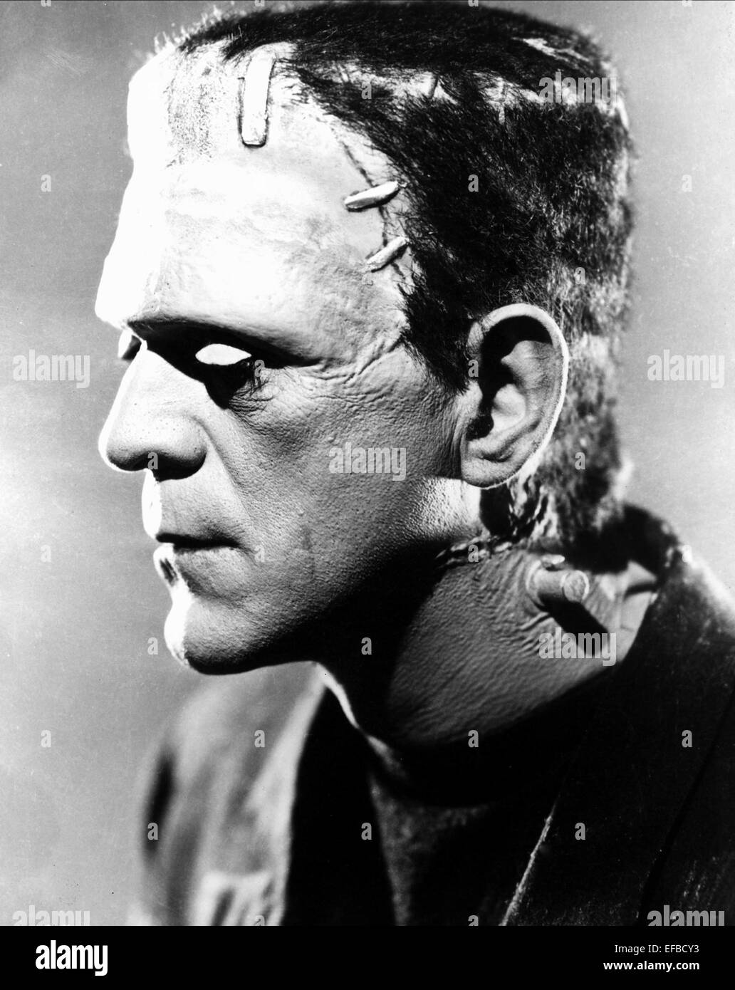 "Boris Karloff Frankenstein 14 x 11/"" Photo Print"