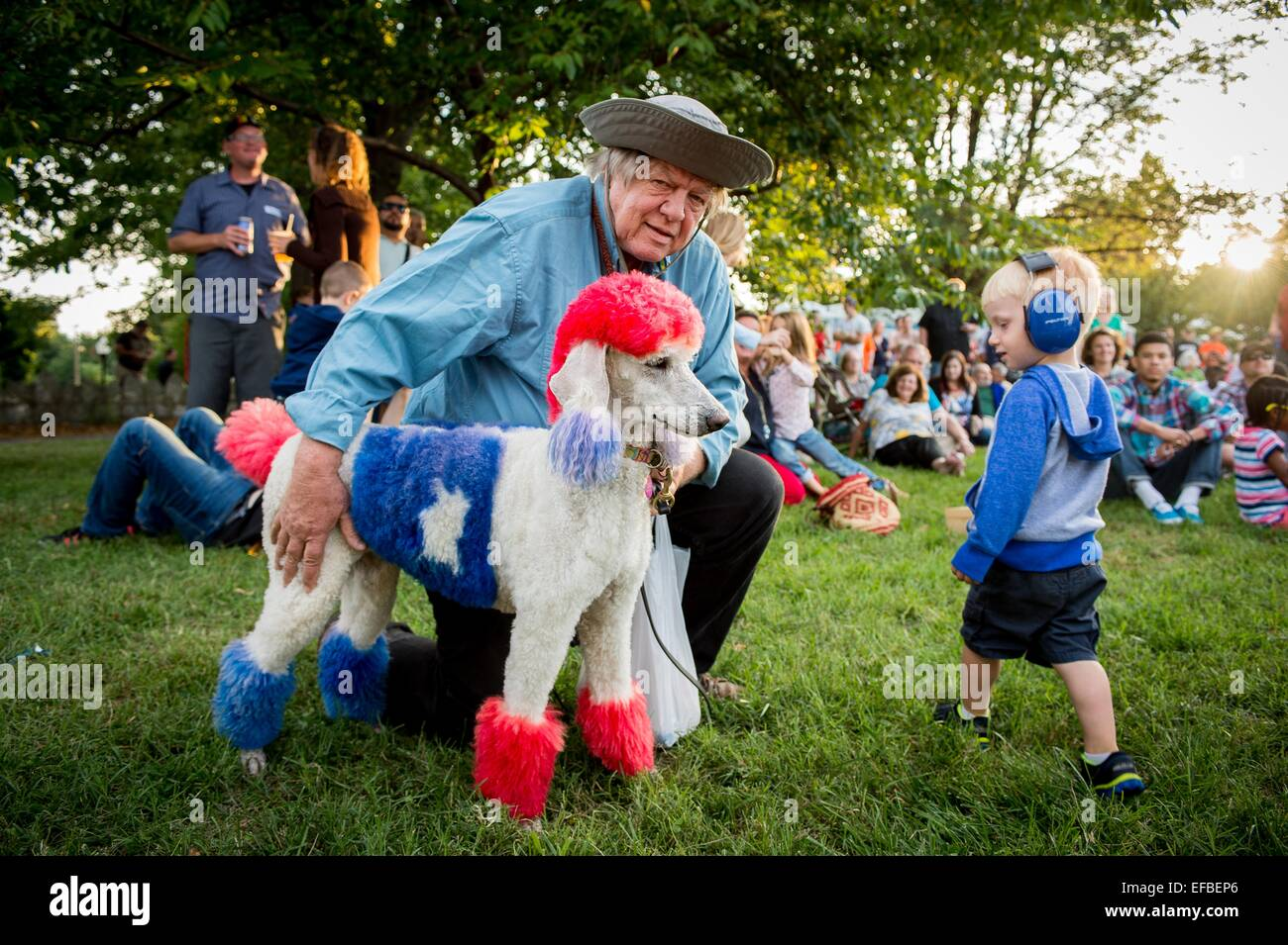 A man shows off his poodle dyed in red, white and blue during the Star Spangled Spectacular event celebrating the - Stock Image
