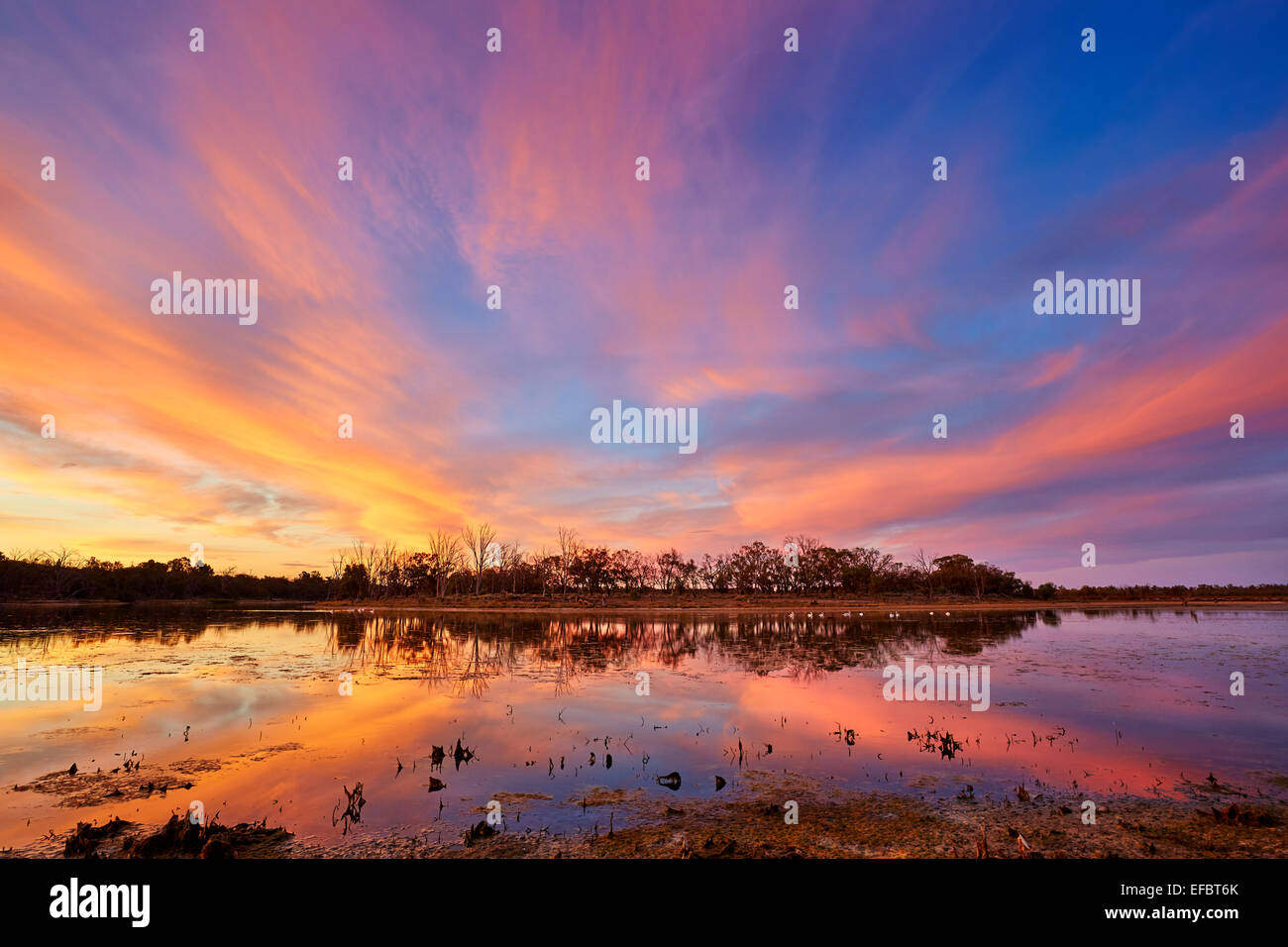 Sunsetting over a small billabong beside the River Murray near Merbein. - Stock Image