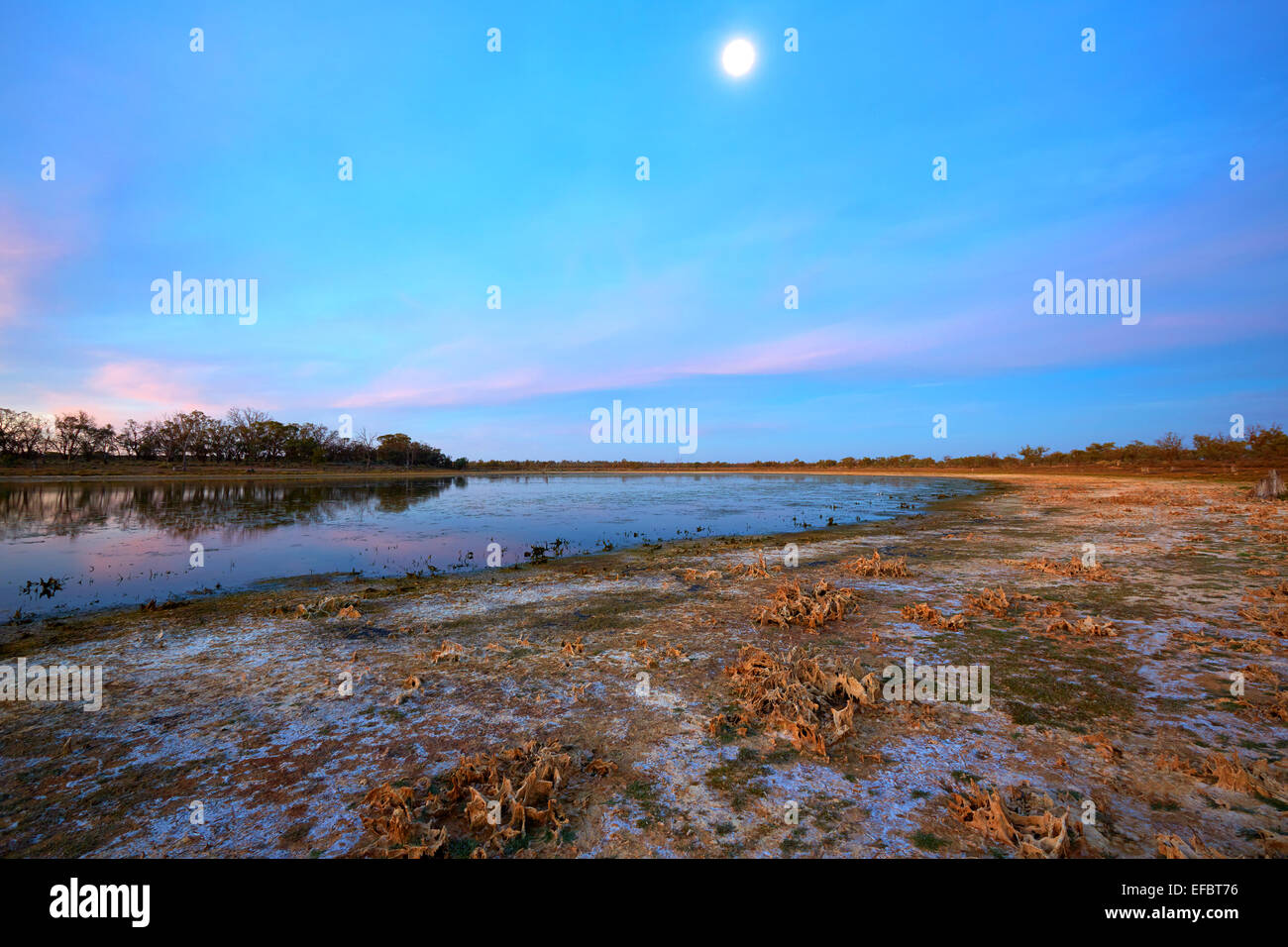 Lat evening over small billabong beside the Murray River. - Stock Image