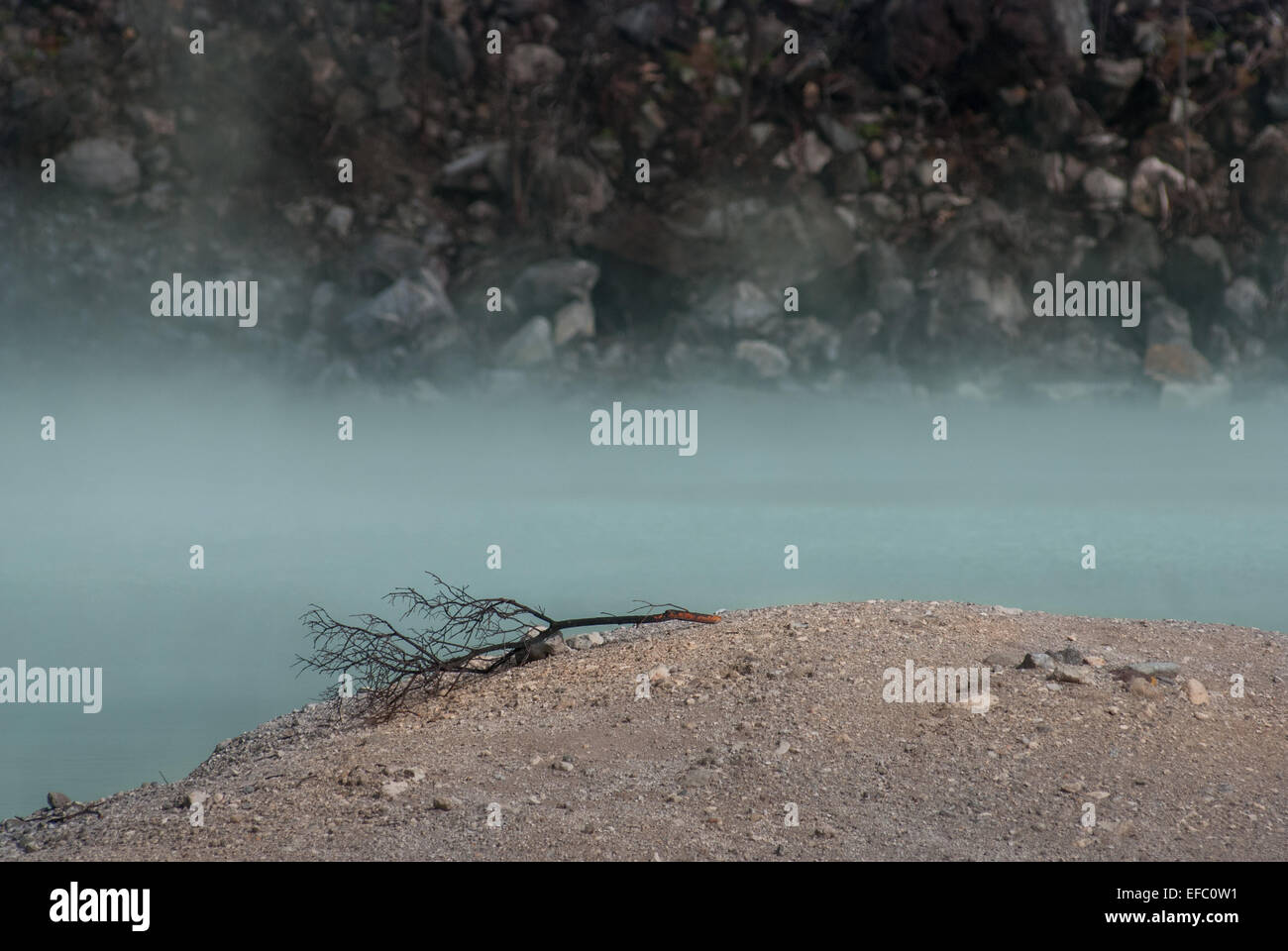 The  volcanic crater of Mount Patuha aka Kawah Putih. - Stock Image