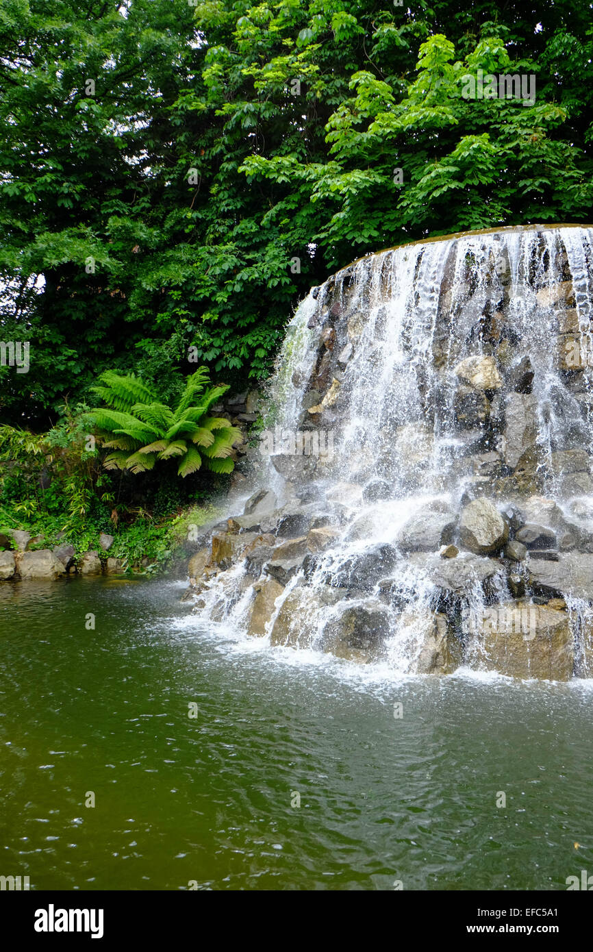 Waterfall at Iveagh Gardens, Dublin - Stock Image