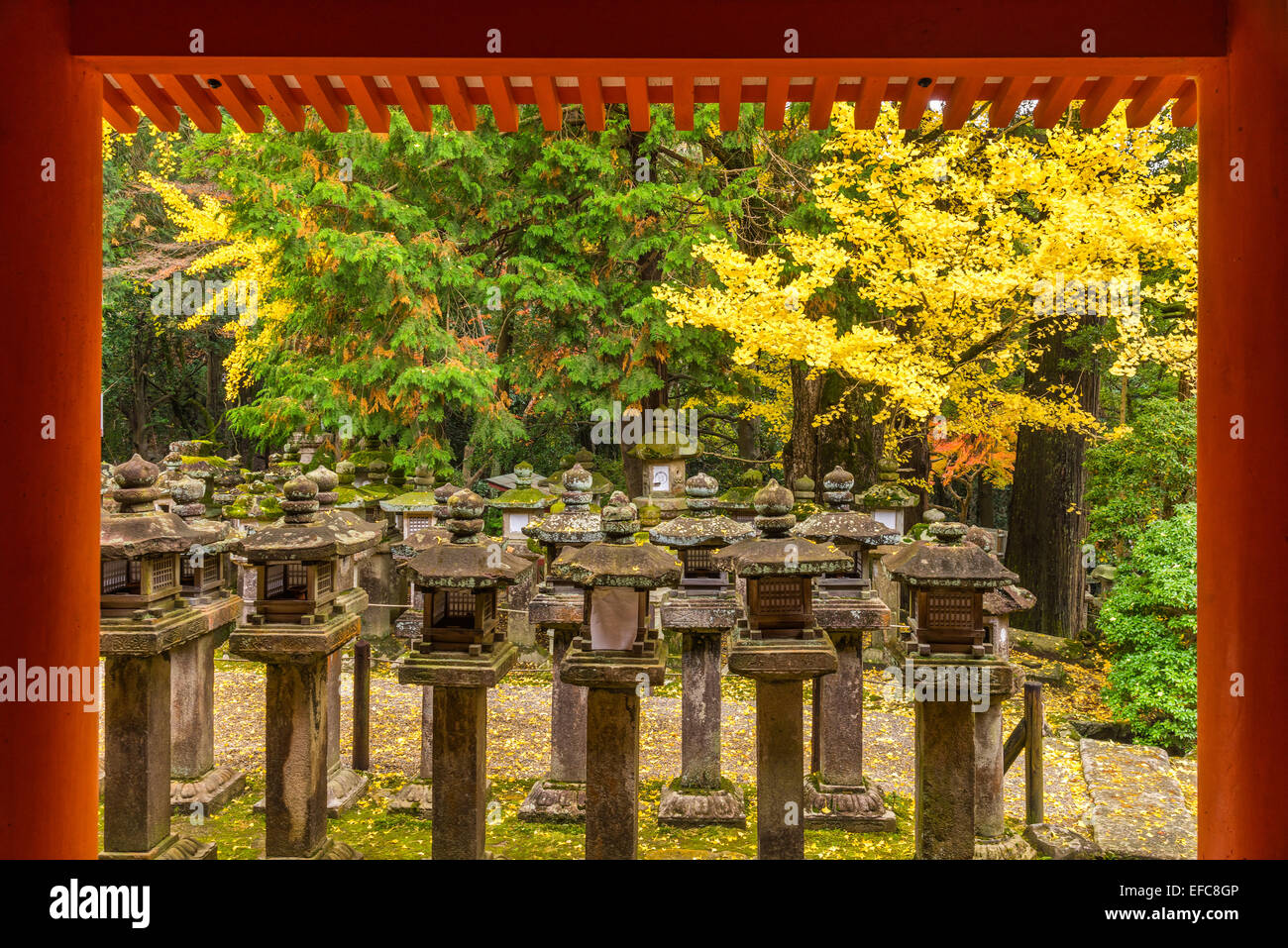 Stone Lantern at Kasuga Taisha in Nara, Japan - Stock Image