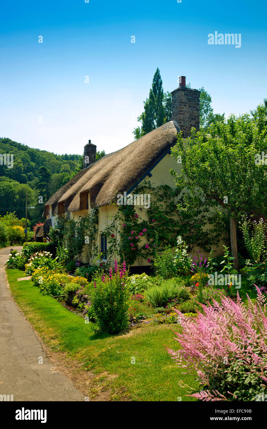 Thatched Cottage Dunster Somerset England Stock Photos