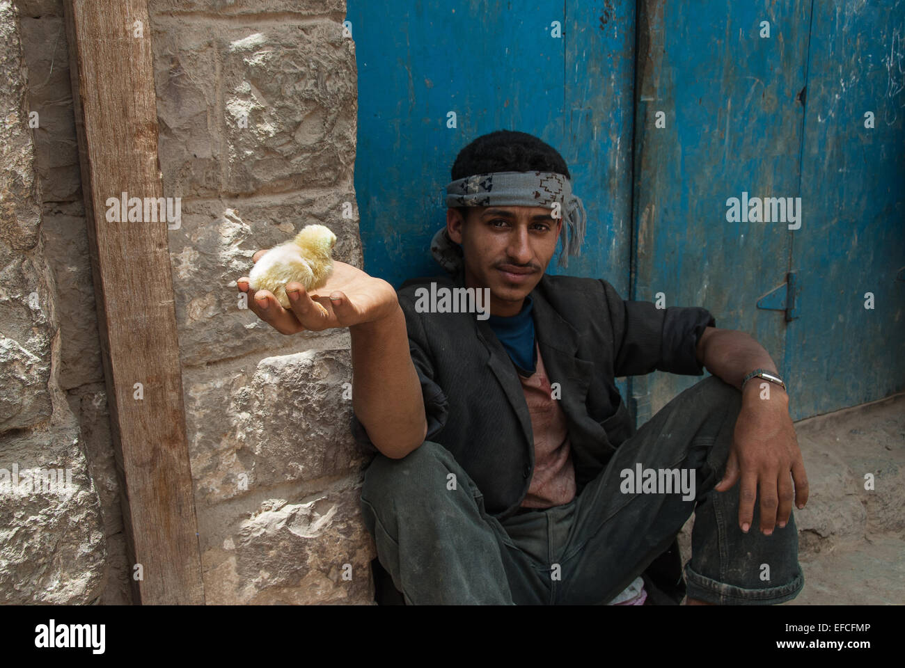 An unidentified young man holds a chick in his hand as he sits outside his house on May 10, 2007 in Jibla, Yemen. - Stock Image