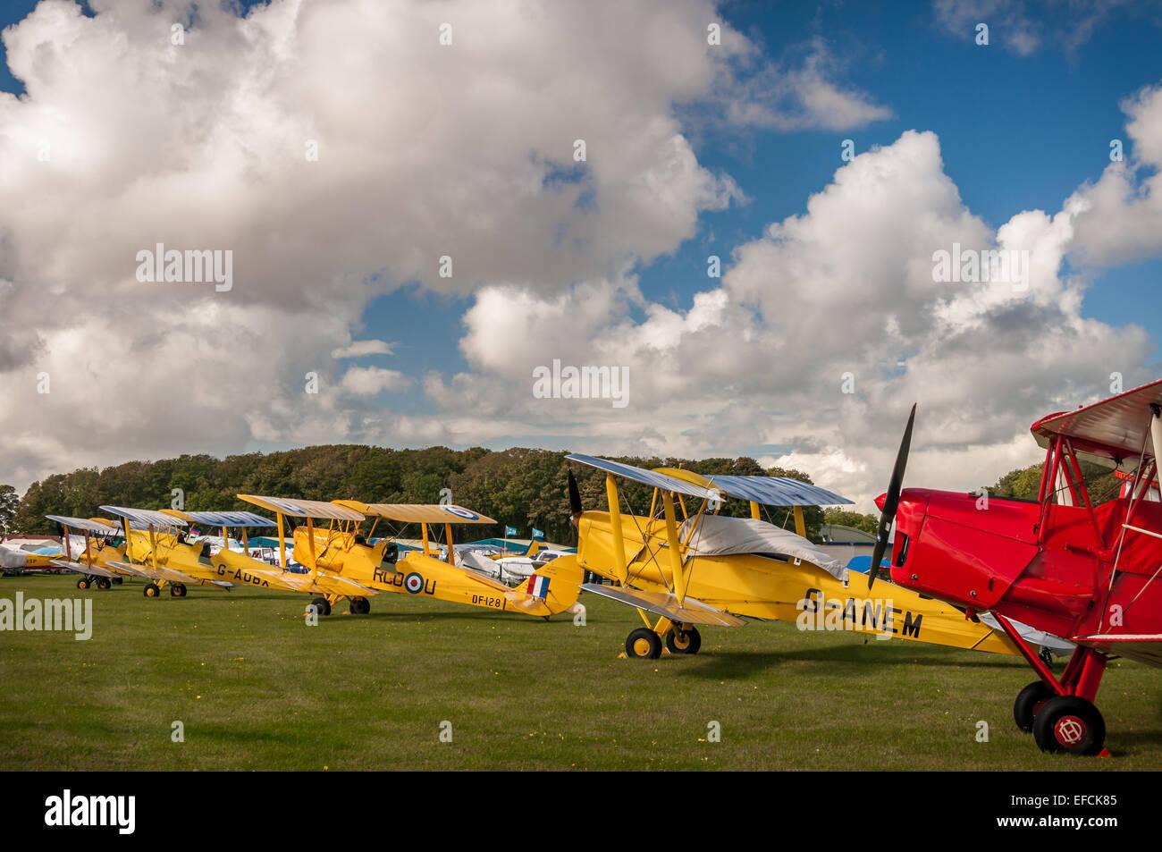 Line of De Havilland Tiger Moths, 1930s biplanes, at Kemble Airshow Stock Photo